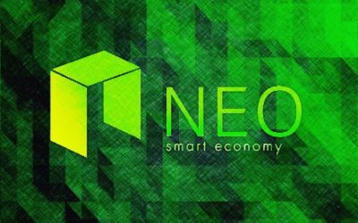 NEO Project review