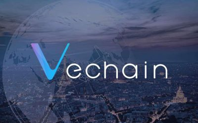 VeChain Project Review